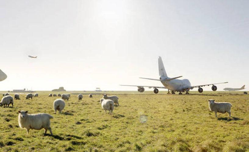 Primarul din România care visează să facă aeroport în comună