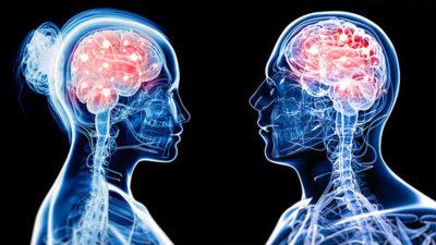 Diferențele dintre creierul bărbaților și cel al femeilor. De ce gândesc diferit