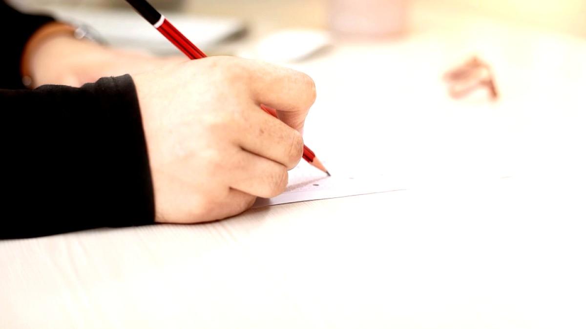 Subiecte și barem pentru limba română
