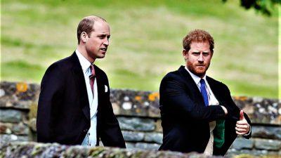 Prințul Harry și prințul William o iau pe căi separate. Ce decizie au luat cei doi frați și soțiile lor
