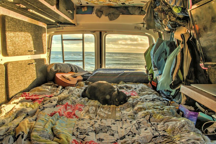 Guy-Quits-Job-and-Travels-With-a-Cat-4