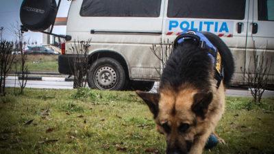 Una dintre adolescentele dispărute la Iași a fost găsită. Unde se afla în tot acest timp