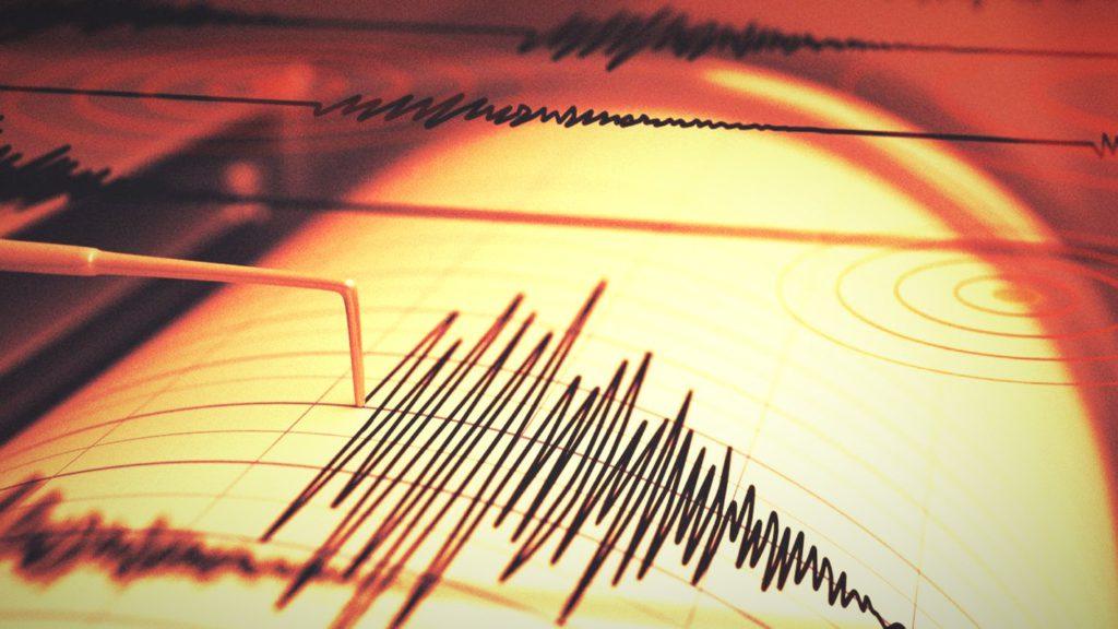 Cutremur puternic în zona seismică Vrancea. Totul s-a produs în dimineața aceasta