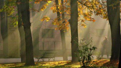 Prognoza meteo ANM pentru miercuri, 9 octombrie. Vremea se încălzește semnificativ: zonele unde se vor înregistra 25 de grade