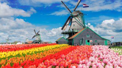 Olanda își schimbă numele. Anunțul oficial făcut de Guvernul de la Haga. Cum se va numi