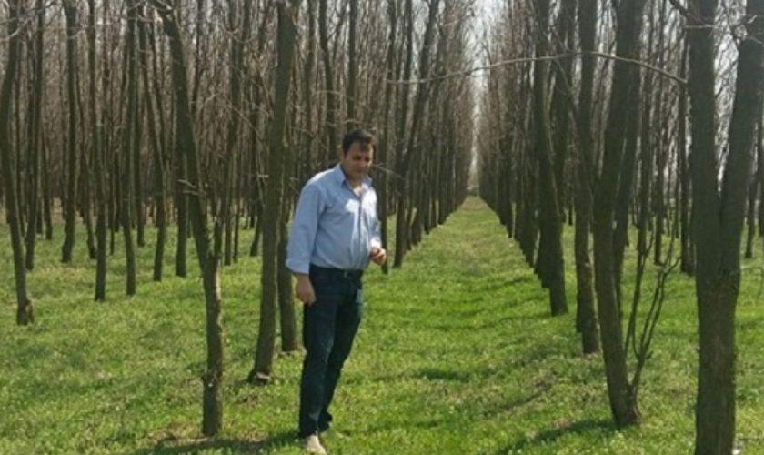 Un fermier din Teleorman a plantat copaci pe terenul său, iar autoritățile i-au taxat dur gestul. Motivul incredibil pentru care el trebuie să plătească 3000 de lei