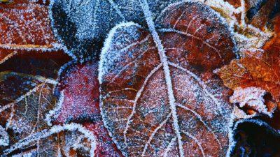 Prognoza meteo, până pe 21 noiembrie, pe regiuni. Temperaturi sub pragul de îngheț, ploi și fenomene extreme