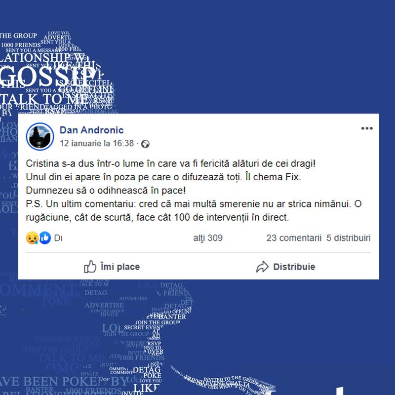 După moartea Cristinei Țopescu, Dan Andronic a postat pe Facebook un mesaj în memoria ei (Sursă foto: Captură Facebook)