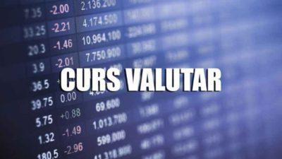 Curs valutar BNR marți, 28 ianuarie. Cum stă Leul față de moneda europeană