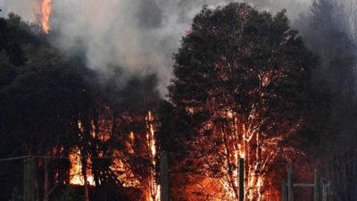 Fumul produs de incendiile din Australia va afecta întreaga planetă. Ce se va întâmpla cu atmosfera din România
