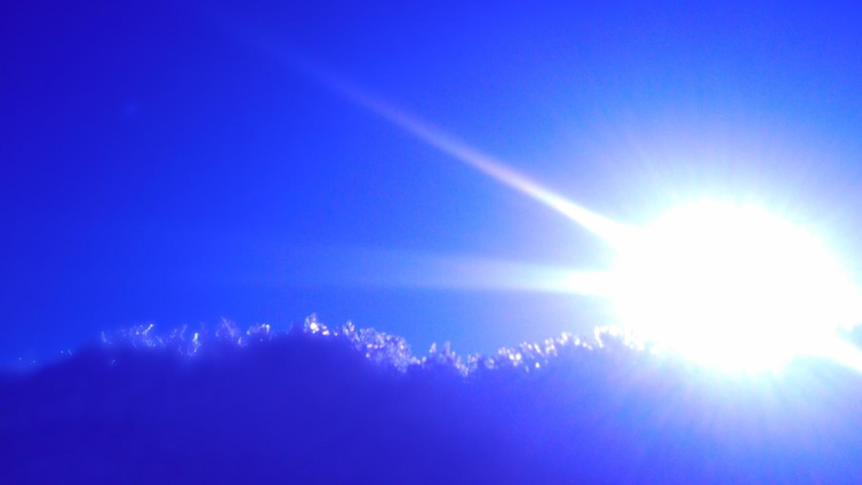 Vreme anormal de caldă. Temperaturi de 18 grade în februarie. Ce se întâmplă în București