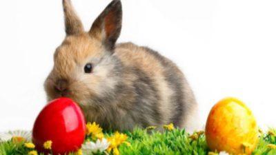 Loteria Română, anunț important pentru tragerile de Paște. Ce trebuie să știe jucătorii