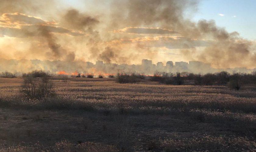 Incendiu de proporții în București. Zecii de mii de metri pătrați din Delta Văcărești sunt afectați până în acest moment