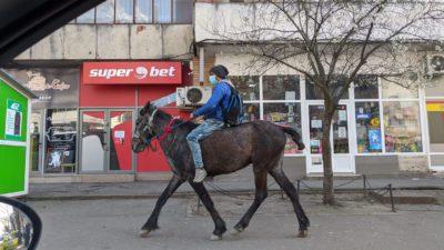 Un ieșean a mers 50 de kilometri cu calul pentru că îi năștea soția. Ce au spus polițiștii când l-au oprit