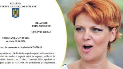 """Olguța Vasilescu face analize pe text. Ce a """"descoperit"""" ilogic în ordonanța militară nr.8"""