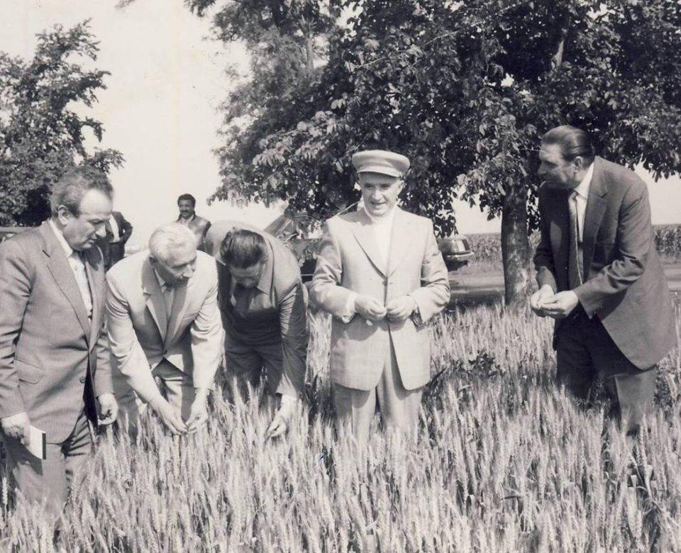 Visul tovarășului Nicolae Ceaușescu: România