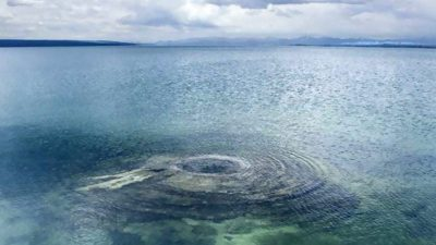 Ce ființe ciudate au fost descoperite în vulcanii subacvatici. Par de pe altă lume