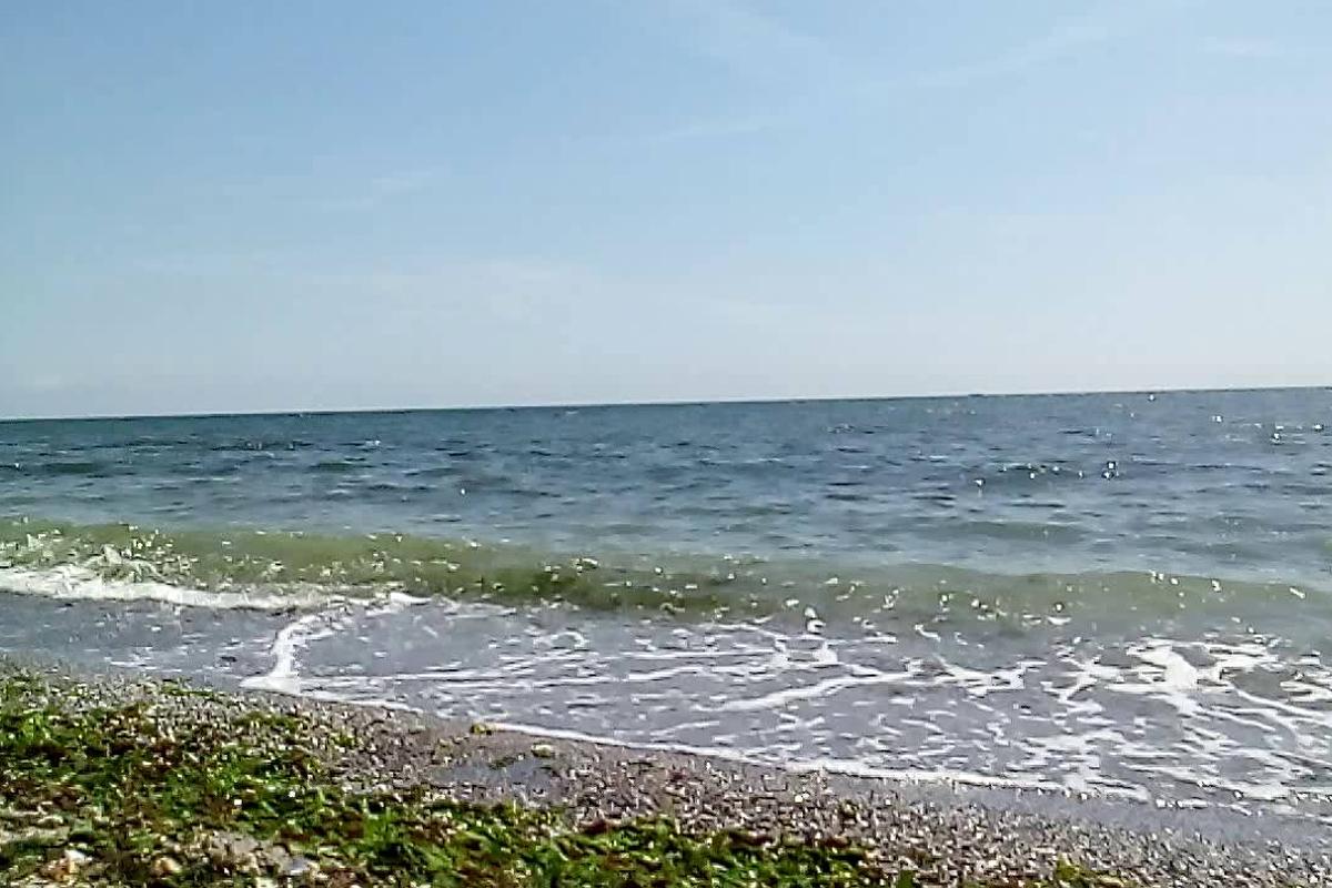 Fenomenul din Marea Neagră care i-a uluit pe cercetătorii români. Ce a  apărut la malul mării - IMPACT