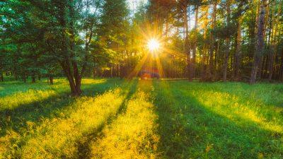 Prognoza meteo luna iunie. Cum va fi prima lună de vară în România. Se schimbă vremea radical
