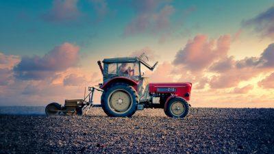 Despăgubiri pentru fermieri, în 2020. Câți bani ar putea primi agricultorii români