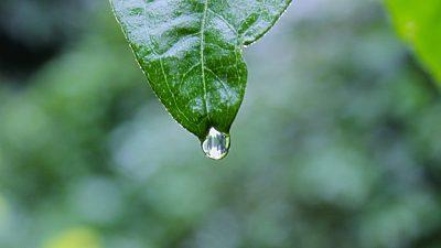 Prognoza meteo ANM pentru sâmbătă, 20 iunie. Unde va ploua torențial