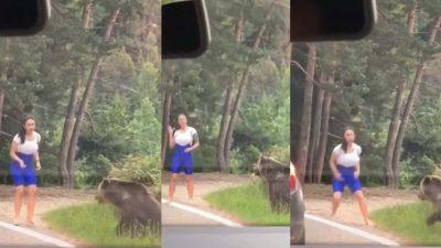 Video. Scene de groază pe Transfăgărășean. O tânără, la un pas să fie devorată de un urs cu care voia să facă un selfie