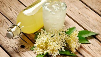 Rețetă de limonadă cu sirop de soc. Cea mai gustoasă și răcoritoare băutură pentru vară