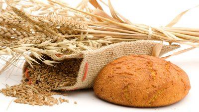 Veste năucitoare pentru români. Ce se întâmplă cu producția de grâu. Cum va fi afectat prețul pâinii