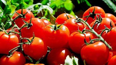 Alimentul cu care nu trebuie să combini roșiile, niciodată. Din păcate, toți românii fac această greșeală