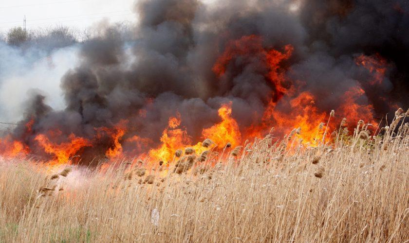 Incendiu de proporții în București. Autoritățile sunt în alertă. Ce recomandări au primit locuitorii Capitalei