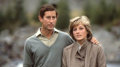 Câți bani a strâns prințesa Diana până la moartea din 1997. Suma este colosală