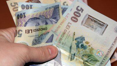Bani mai mulți pentru producătorii români care vând această legumă. Anunț important pentru toți cultivatorii