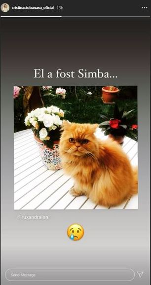 El a fost Simba