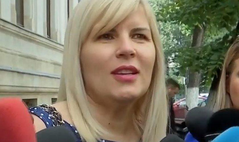 Elena Udrea, apariție de senzație în public. Toată lumea a observat ce decolteu are