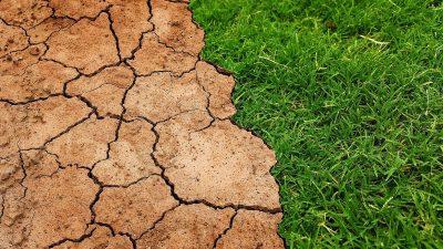 Clima dă peste cap România. Ce probleme grave vor fi în țara noastră, începând din 2021