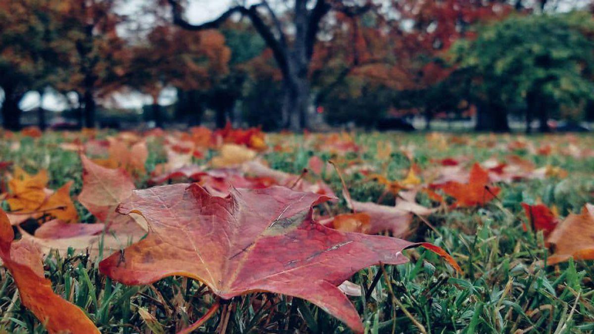 Prognoza meteo octombrie