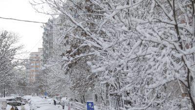 METEO noiembrie 2020. Lapovița și ninsorile vor pune stăpânire pe România. De când