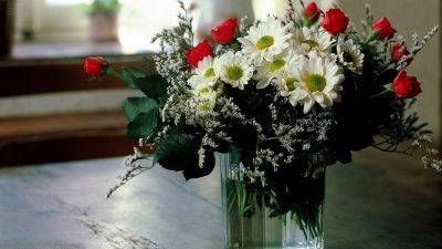 De ce ți se ofilesc florile în vază. Greșeala pe care toți românii o fac fără să știe