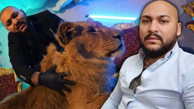 Leul folosit de Dani Mocanu a fost găsit. Unde se afla și în ce stare jalnică e