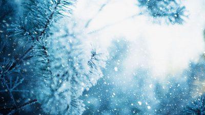 Vremea 2-8 noiembrie. Ce temperaturi ne așteaptă la început de lună