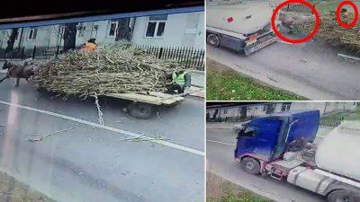 Accident grav în Iași. Căruță acroșată de un TIR cu caii și căruțașul căzuți la pământ. Video șocant cu reacția șoferului vinovat