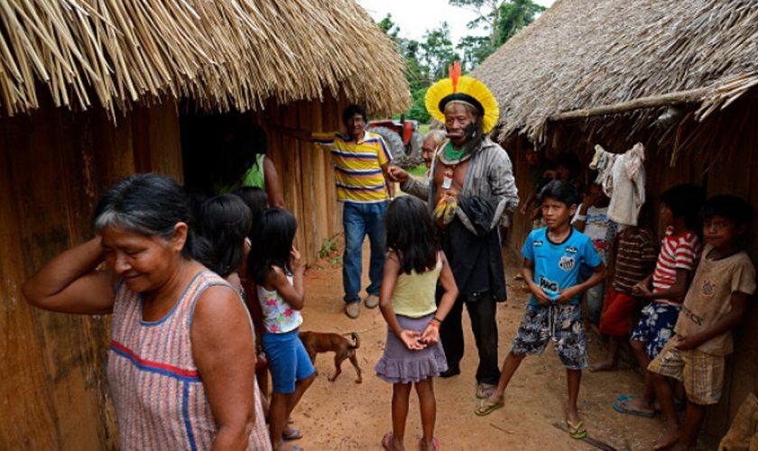 Planta secretă care îi vindecă pe amazonieni de covid-19. Ce pățesc cei cu forme grave, după consum