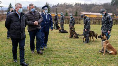 """Câinii antrenaţi pentru depistarea persoanelor infectate cu SARS-CoV-2, aduși pe un mare aeroport din țară. Lucian Bode: """"Acest element de noutate şi munca acestor colegi poliţişti vor da rezultate"""""""