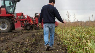 Lovitură cruntă pentru fermierii români. Ce se întâmplă cu subvențiile promise