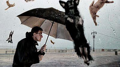 Meteo. Vremea se schimbă total. Ploi și vijelii în România