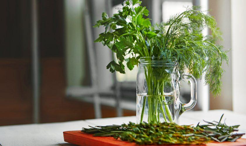 Cum revitalizezi verdeața ofilită, de fapt. 3 trucuri geniale și simple de la gospodinele adevărate