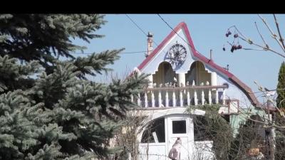 Locuință 'magică' în Iași. Cum arată minunăția desprinsă parcă din povești. Oamenii se miră când o văd