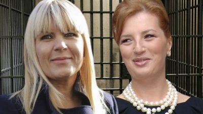 Scapă Elena Udrea și Ioana Băsescu de închisoare?! Cum pot beneficia de noua lege