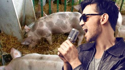 Un cântăreț celebru din anii 2000 s-a reprofilat. Cum a ajuns să vândă carne de porc