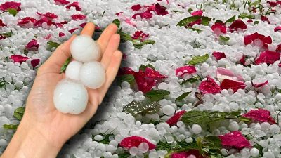 Grindină cât oul de prepeliță în România. Ce zonă a fost asaltată de gheață în câteva minute VIDEO